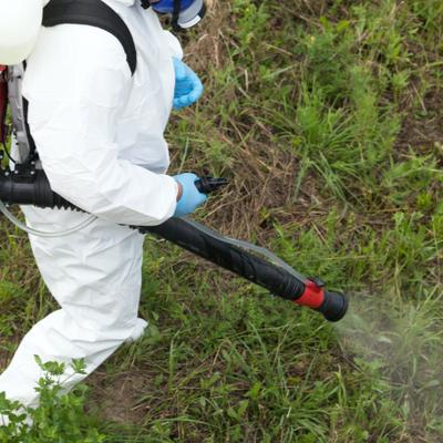 professional mosquito spray